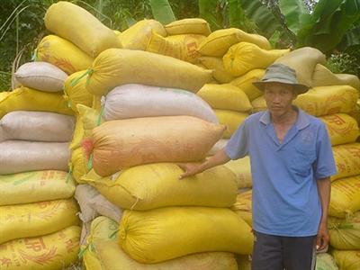 Tháng 4, dự kiến xuất khẩu 700.000 tấn gạo