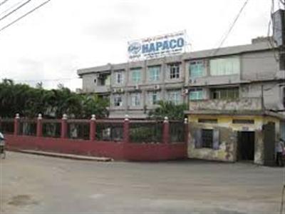 Hapaco đặt mục tiêu lợi nhuận trước thuế 30 tỷ đồng, chia cổ tức 15%