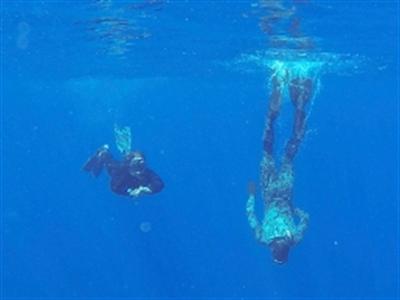 Tín hiệu ở nam Ấn Độ Dương là của hộp đen máy bay