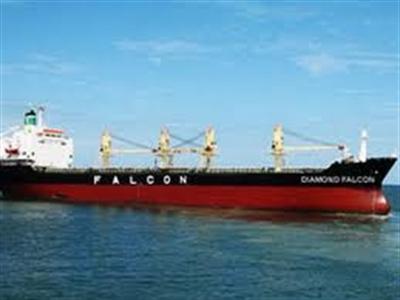 Falcon chuẩn bị các thủ tục để phá sản