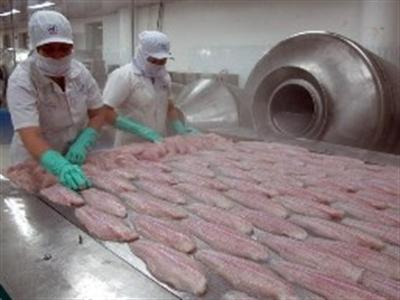 Mỹ soán ngôi EU về nhập khẩu cá tra Việt Nam
