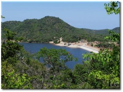 Ninh Thuận, Bình Thuận chuyển mục đích sử dụng 65 ha đất nông nghiệp