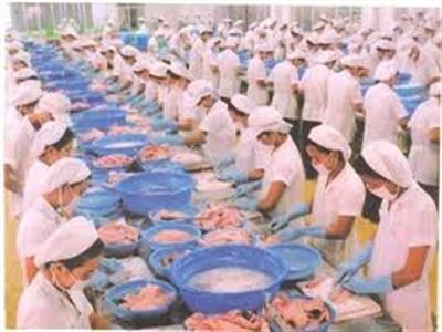 5 tháng, xuất khẩu thủy sản tăng 25%, sản xuất tăng 3,2%