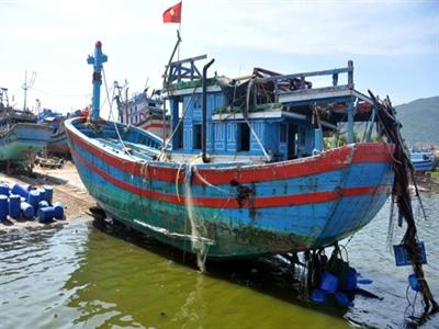 BIDV cho vay 3.000 tỷ đồng hỗ trợ ngư dân bám biển