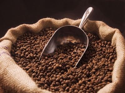 Xuất khẩu cà phê sang Đức giữ vững
