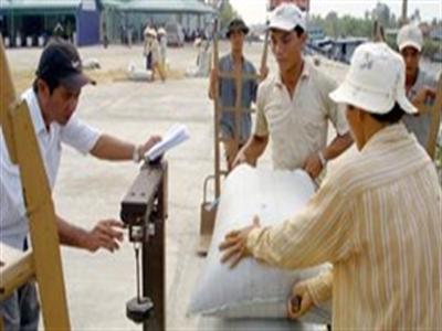 Trung Quốc đẩy mạnh nhập khẩu gạo của Việt Nam
