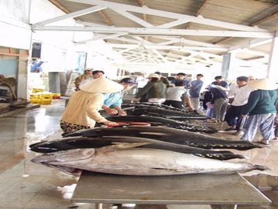 Ba Lan - thị trường xuất khẩu tiềm năng cho cá ngừ Việt Nam