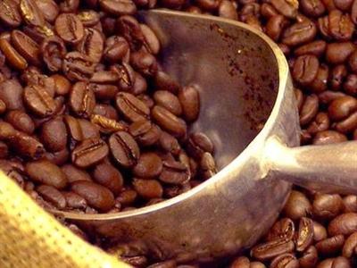 Giá cà phê Tây Nguyên giảm mạnh xuống 38 triệu đồng/tấn