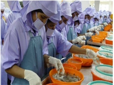 Ấn Độ: Xuất khẩu thủy sản bị ảnh hưởng bởi rupee tăng giá