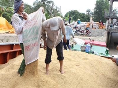 Tiêu thụ lúa gạo: Tái cơ cấu để giảm áp lực
