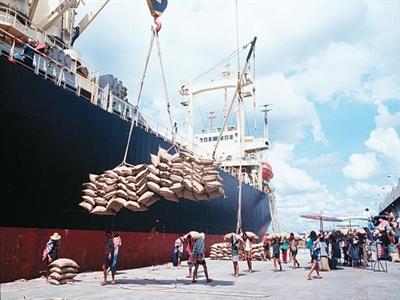 Thái Lan: Giá xuất khẩu gạo tăng do thiếu lao động và nguồn cung giảm