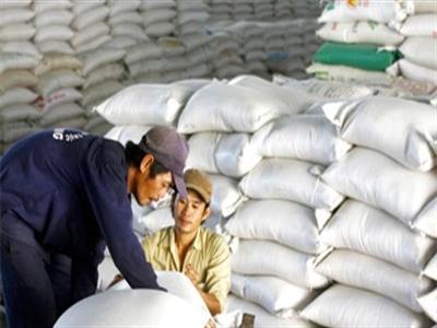 Giá gạo 5% tấm tăng trên 300.000 đồng/kg