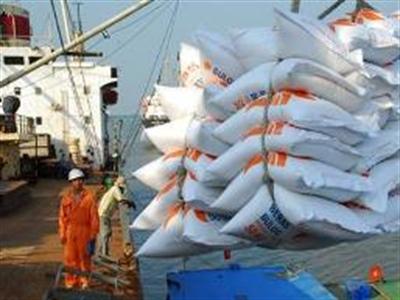 """Xuất khẩu gạo ở trạng thái """"không bình thường"""""""