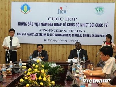 Việt Nam chính thức là thành viên 69 của Tổ chức gỗ nhiệt đới quốc tế