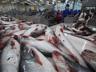 Xuất khẩu thủy sản 6 tháng đạt 3,45 tỷ USD