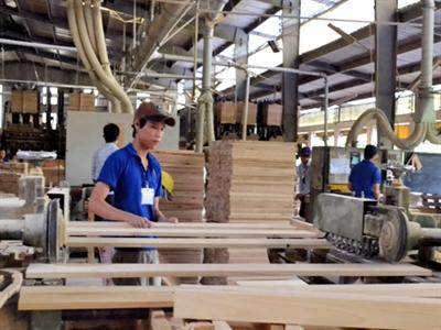 Hướng tới mục tiêu xuất khẩu 6,2 tỷ USD gỗ và sản phẩm từ gỗ