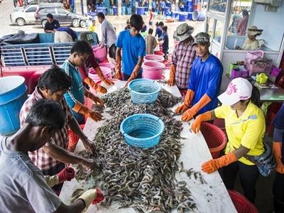 Thương mại Thái Lan suy yếu do bất ổn chính trị