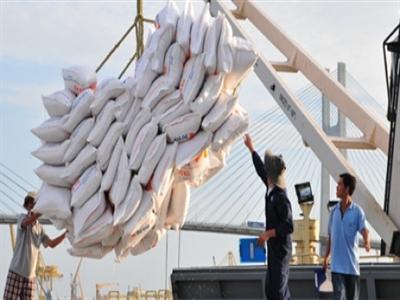 Đã xuất khẩu gần 2,85 triệu tấn gạo, trị giá 1,3 tỷ USD