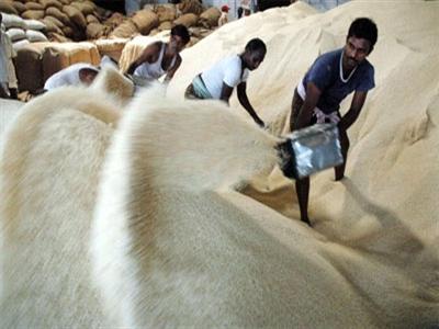 Giá lương thực thế giới giảm tháng thứ 3 liên tiếp