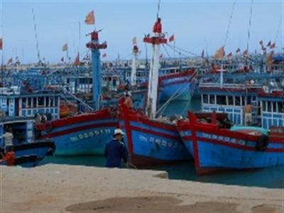 Bổ sung 100 tỷ đồng dự án Vũng neo đậu tàu thuyền Lý Sơn