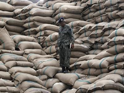 Bộ Thương mại Thái Lan lên tiếng về chất lượng và số lượng gạo dự trữ