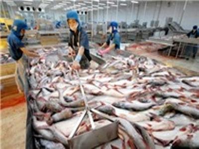 Vĩnh Hoàn được hưởng thuế chống bán phá giá cá tra 0 USD