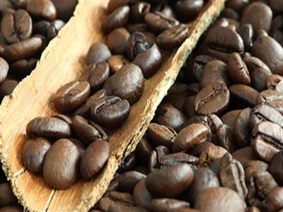 Giá cà phê Tây Nguyên giảm nhẹ xuống 40,7 triệu đồng/tấn