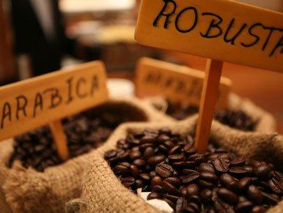 """Thị trường cà phê """"vỡ trận"""""""