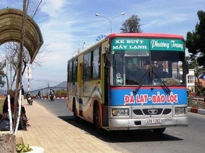 Phương Trang Đà Lạt ngừng khai thác tất cả các tuyến xe buýt
