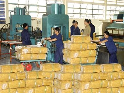 Việt Nam xuất khẩu cao su lớn thứ ba thế giới