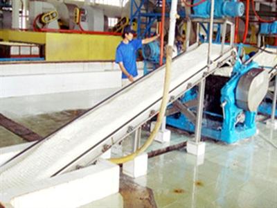 Phước Hòa 6 tháng ước đạt 130 tỷ đồng lợi nhuận, thanh lý 560 ha cao su