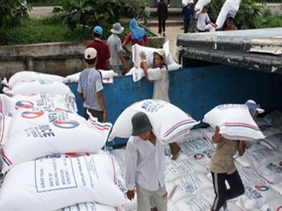 Xuất khẩu gạo hết chật vật