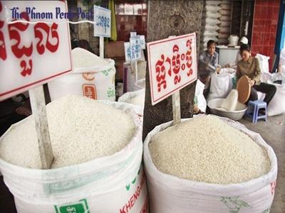 Liên đoàn Lúa gạo Campuchia cam kết cải cách thị trường lúa gạo