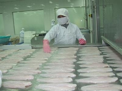 Xuất khẩu thủy sản: Tôm vui để buồn cho cá