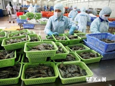 Khánh thành nhà máy chế biến tôm công suất 6.500 tấn/năm