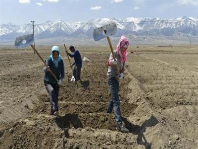 Hạn hán tác động tiêu cực đến sản xuất lương thực tại Trung Quốc