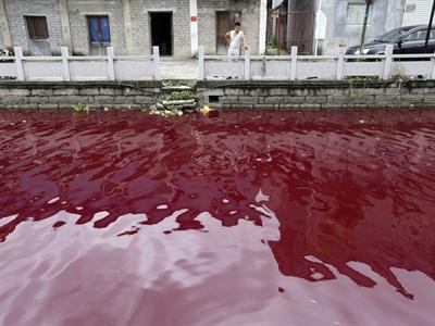 Báo động ô nhiễm nguồn nước trầm trọng ở Trung Quốc