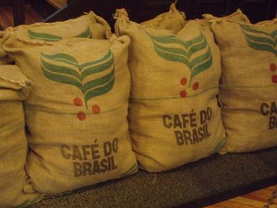 Sản lượng cà phê Brazil năm nay chỉ đạt 40 triệu bao