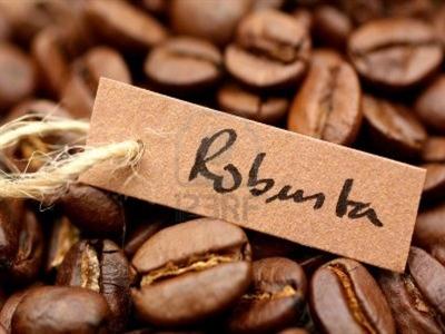 Khối lượng cà phê Robusta giao tháng 7 lên cao nhất hơn 1 năm