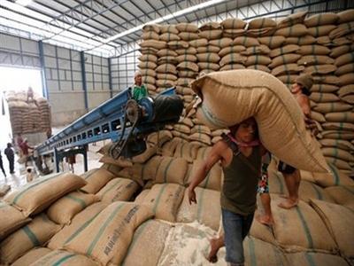 IGC: Thương mại gạo toàn cầu đạt kỷ lục 40 triệu tấn