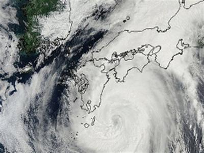 Bão Hạ Long gây thiệt hại nặng ở Nhật Bản