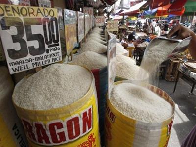 Vinafood 1 và Vinafood 2 tham gia phiên thầu 500.000 tấn gạo của Philippines