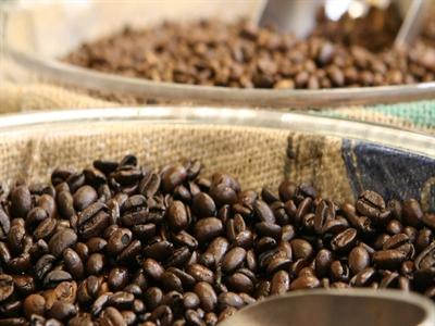 Cuối mùa giá cà phê vẫn yếu, tại sao?
