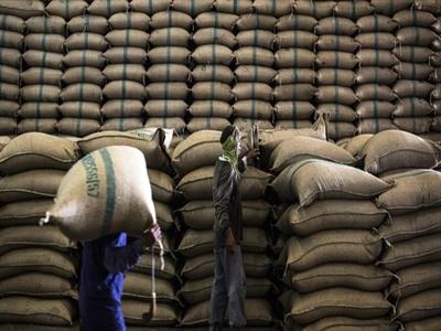 Thái Lan đồng ý bán 73.000 tấn gạo sau phiên đấu giá đầu tiên