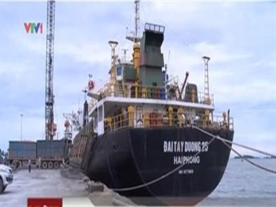 Doanh nghiệp Việt chiếm hơn 10% thị phần vận tải biển
