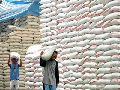 Philippines bác bỏ mọi mức giá chào trong phiên thầu 500.000 tấn gạo