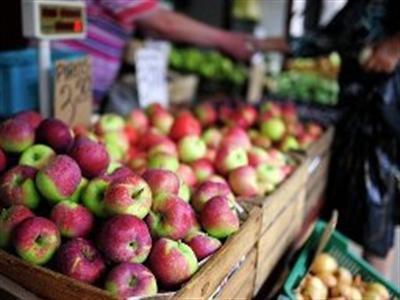 Cấm vận phương Tây, Nga muốn tăng cường mua nông sản ASEAN