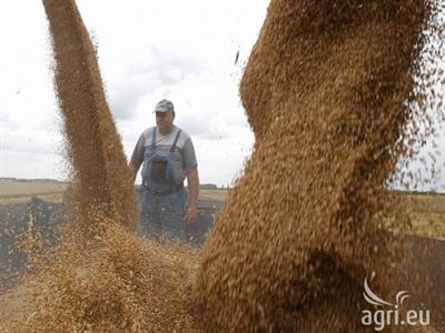 Xuất khẩu ngũ cốc Ukraine tăng lên 5,01 triệu tấn