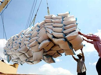 Sản lượng lúa gạo trong quý III của Philippines ước giảm 10%