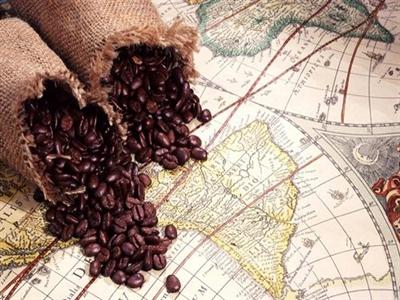 Volcafe: Thiếu cung cà phê sẽ cao nhất 9 năm